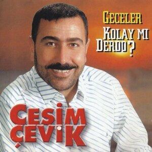 Cesim Çevik 歌手頭像