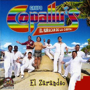 Grupo Copally's 歌手頭像