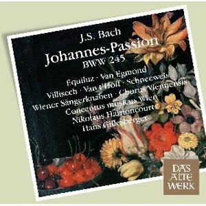 Hans Gillesberger, Nikolaus Harnoncourt, Chorus Viennensis & Concentus Musicus Wien 歌手頭像