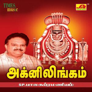 S.P.Balasubrahmanyam,Vani Jayaram 歌手頭像