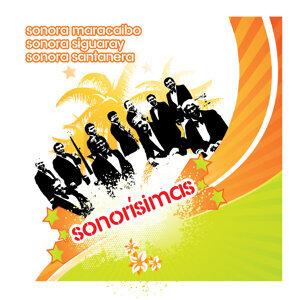 Sonora Maracaibo | Sonorísima Siguaray | La Sonora Santanera 歌手頭像
