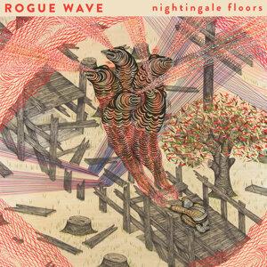 Rogue Wave (洛格潮浪樂團) 歌手頭像