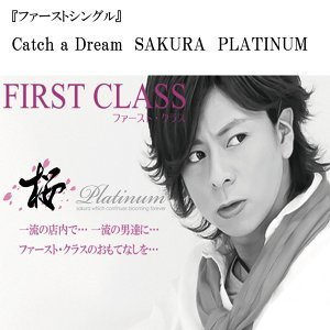 桜~PLATINUM~ 歌手頭像