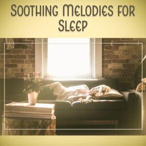 Bedtime Sleep Academy 歌手頭像