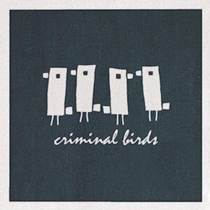 Criminal Birds