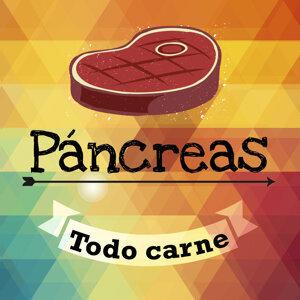 Páncreas 歌手頭像