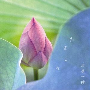 Kazusa Kawahara 歌手頭像
