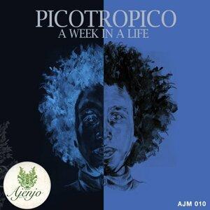 Picotropico 歌手頭像