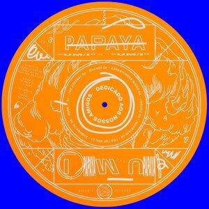 Papaya 歌手頭像