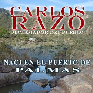 Carlos Razo 歌手頭像