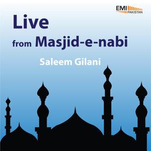 Saleem Gilani 歌手頭像
