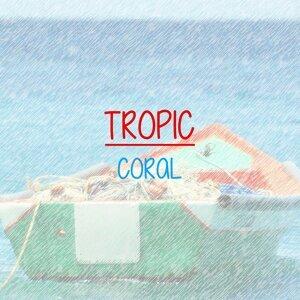 Coral 歌手頭像