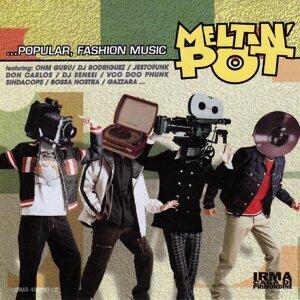 Meltin Pot Vol. 1 歌手頭像