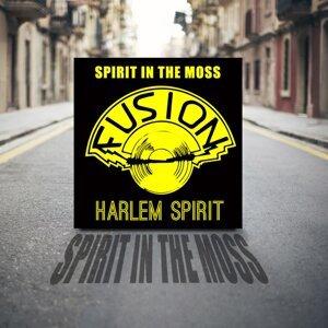 Harlem Spirit 歌手頭像