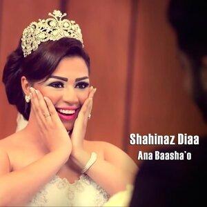 Shahinaz Diaa 歌手頭像