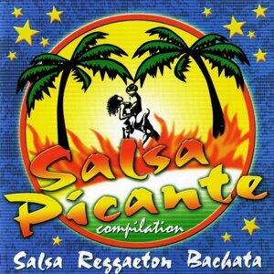 Salsa Picante Compilation 歌手頭像