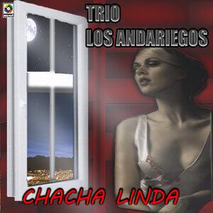 Trio Los Andariegos 歌手頭像