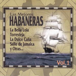 Rondalla Bidasoa | Agrupacion El Alpargate | Voces Del Mar 歌手頭像
