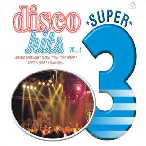 The Disco Sound 歌手頭像