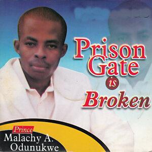 Prince Malachy A.Odunukwe 歌手頭像