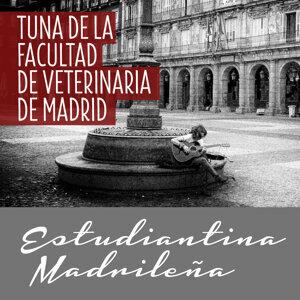 Tuna De La Facultad De Veterinaria De Madrid 歌手頭像