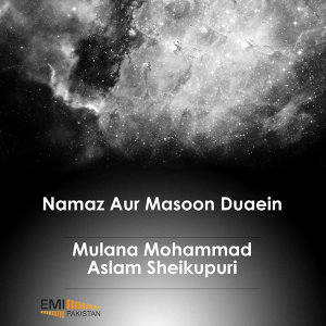 Molana Mohammad Aslam Sheikhupuri 歌手頭像
