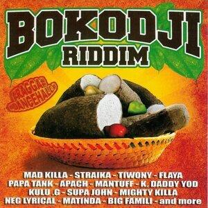 Bokodji Riddim 歌手頭像