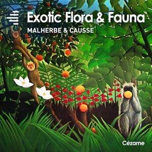 Didier Malherbe, François Causse 歌手頭像