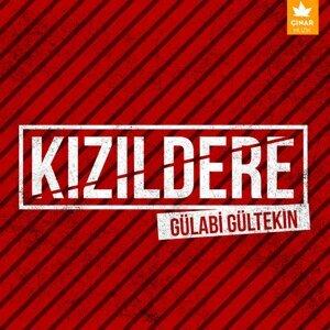 Gülabi Gültekin 歌手頭像