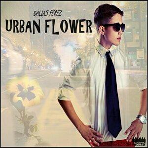 Dalias Perez 歌手頭像
