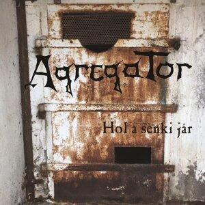 Agregator