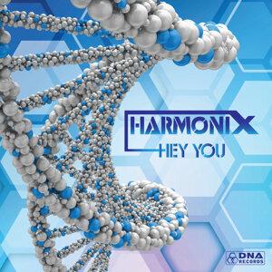 Harmonix 歌手頭像