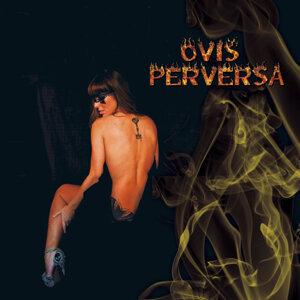 Ovis Perversa 歌手頭像