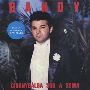 Bandy 歌手頭像