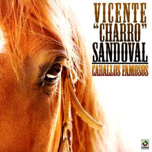 """Vicente """"charro"""" Sandoval 歌手頭像"""