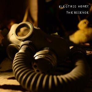 Electric Honey 歌手頭像