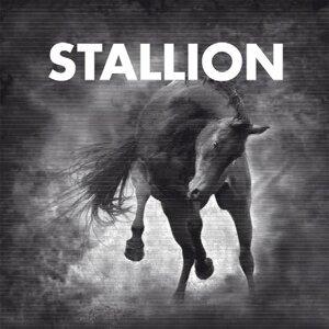 Stallion 歌手頭像