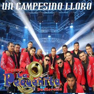 Banda La Pequeñita De Morelia 歌手頭像