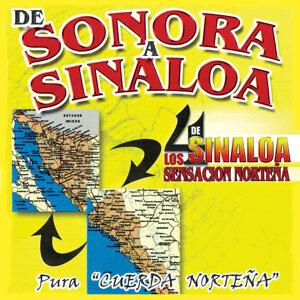 Los Cuatro De Sinaloa 歌手頭像