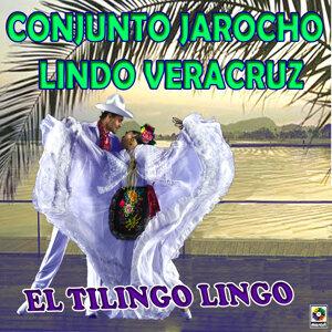 Conjunto Jarocho Lindo Veracruz 歌手頭像