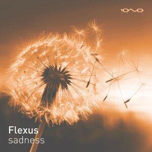 Flexus 歌手頭像