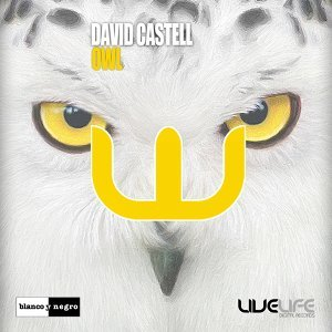 David Castell 歌手頭像