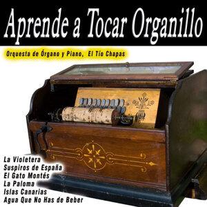 Orquesta de Órgano y Piano|El Tío Chapas 歌手頭像