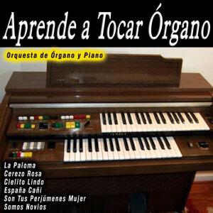 Orquesta de Órgano y Piano 歌手頭像