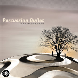 Percussion Bullet