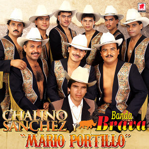 Chalino Sanchez Y Banda Brava 歌手頭像