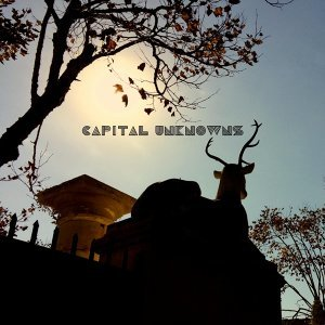 Capital Unknowns