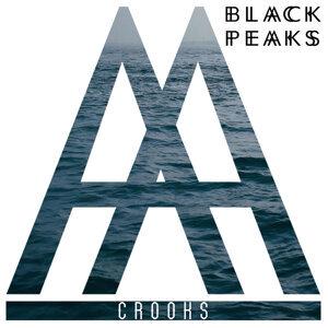 Black Peaks 歌手頭像