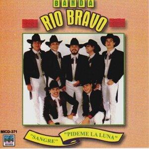 Banda Rio Bravo 歌手頭像