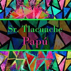 Papu 歌手頭像
